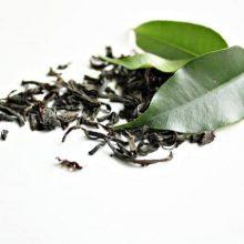 grüner Tee gesund?